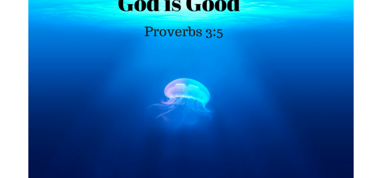 God is Good. Proverbs 3:5